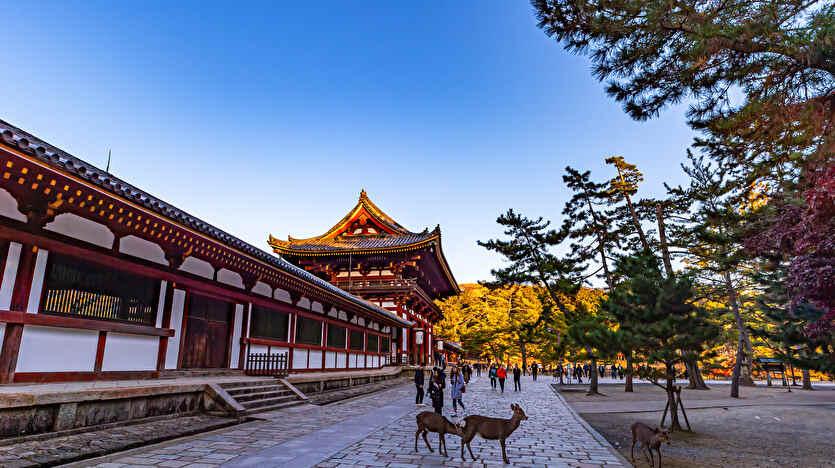 債務整理 奈良