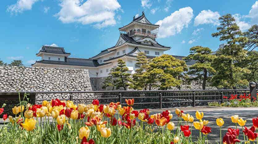 債務整理 任意整理で富山でおすすめの弁護士・司法書士事務所